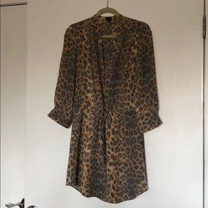 Aritzia shirt dress